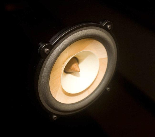 The Voxativ Ampeggio speaker driver