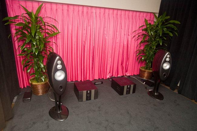 Vivid speakers on Bricasti amplifiers