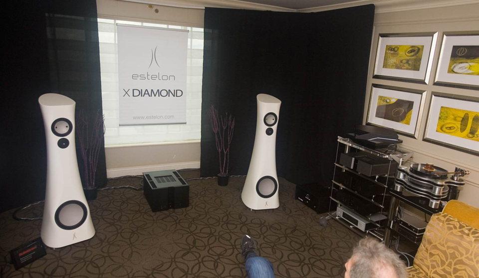 Estelon X Diamond speakers on Vitus amps